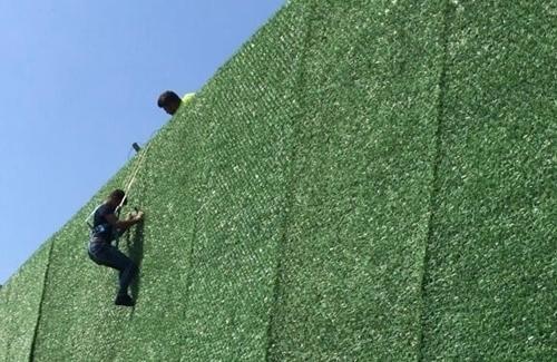 Çim Çit Duvar Giydirme
